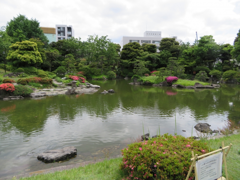 "This pond in Yasuda Garden is called Shinji-ike, meaning pond in the shape of the kanji character for ""heart(shin)."""