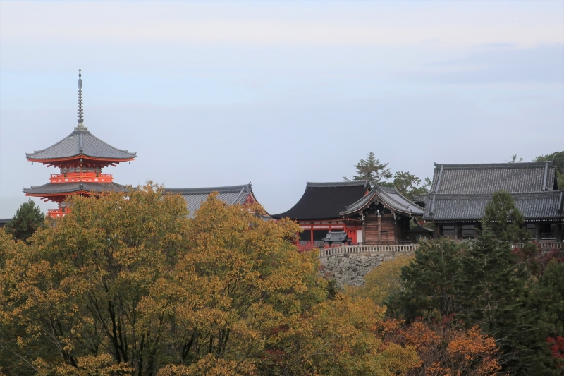 Kiyomizudera Temmple, one of the most popular temples in Japan