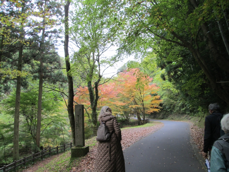 You can enjoy either walking or cycling to the entrance of the mine shaft. Every season has natural beauty.