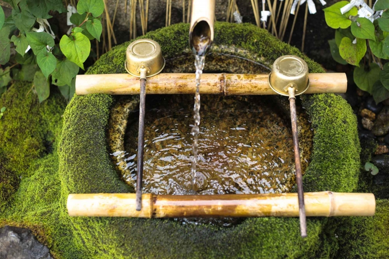 Collect and drink crystal clear water from wells all around the city - including Kyoto's oldest well