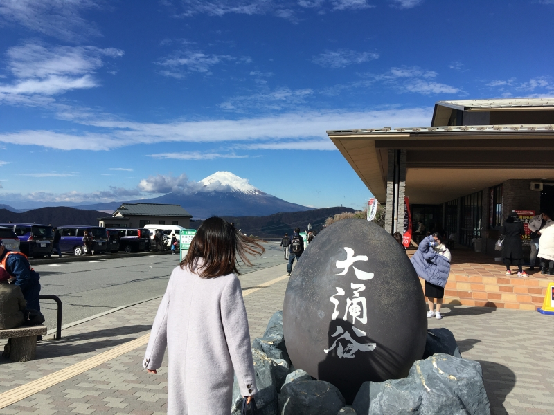 You can eat famous black eggs at Owakudani. Black eggs are cooked using steam from Owakudani volcano.