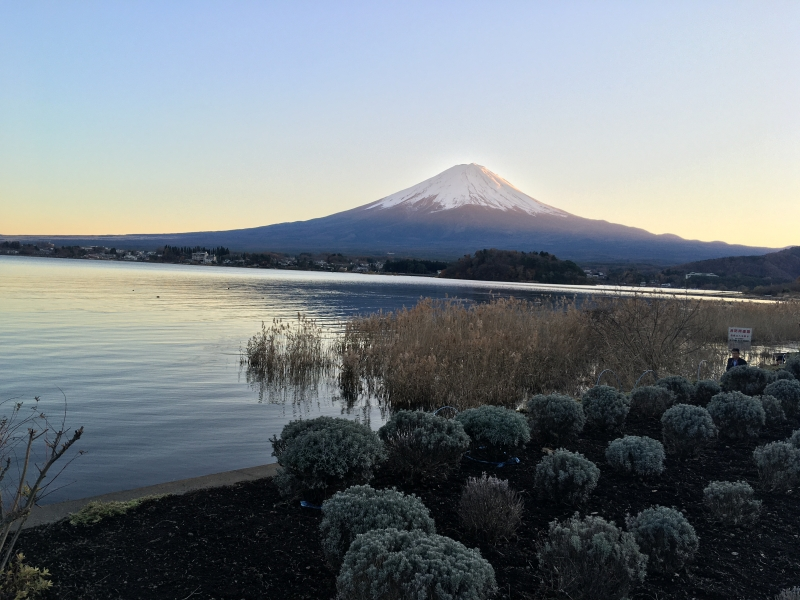 From the Kawaguchiko park, you can enjoy the view of Mt. Fuji floating on the lake. You will be able to take some great commemorative photos.