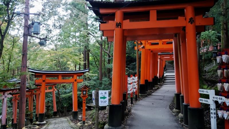 Vermilion Torii gates in Fushimi-Inari