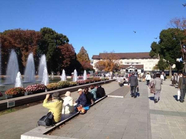 Tokyo National Museum 11/27/2014