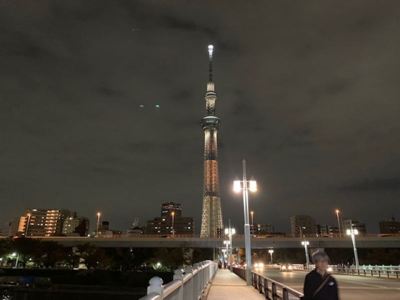 Dynamic view from a bridge over Sumida river