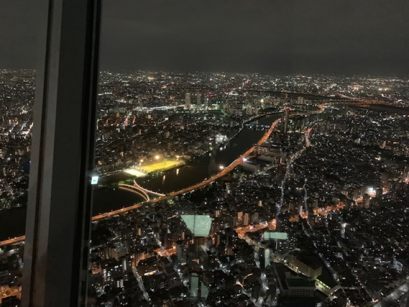 Dynamic and elegant night view
