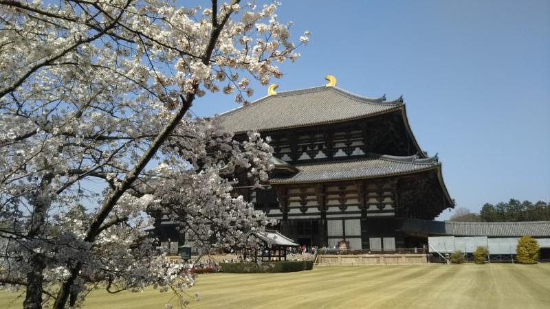 Osaka,Kyoto,and Nara Tour