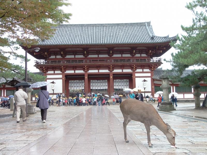 Todaiji Buddhist Temple