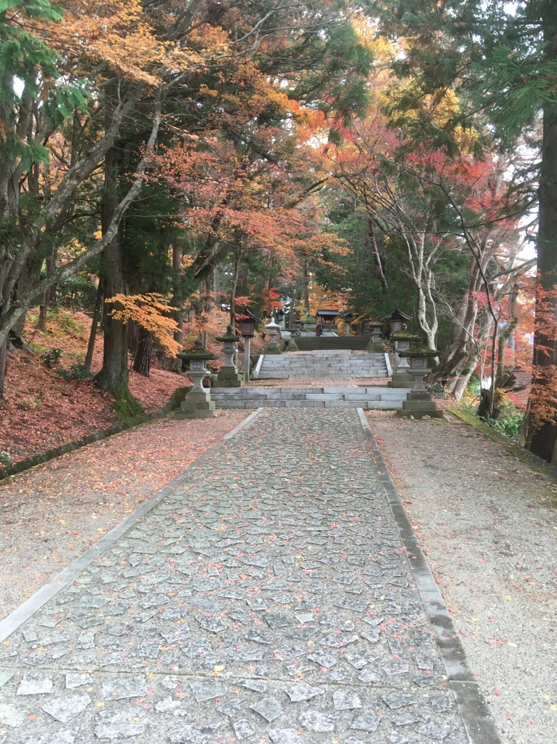 Full Day Private Tour of Takayama
