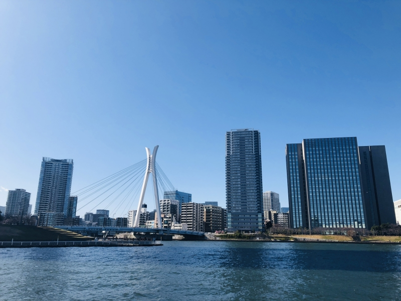 Modern & Traditional FULL day private TOKYO city tour #2