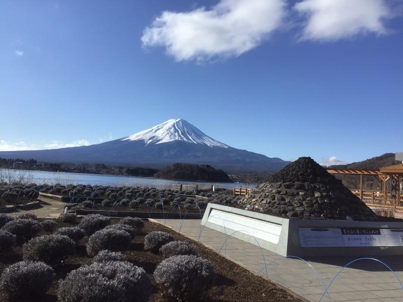 Mt Fuji from Oishi park