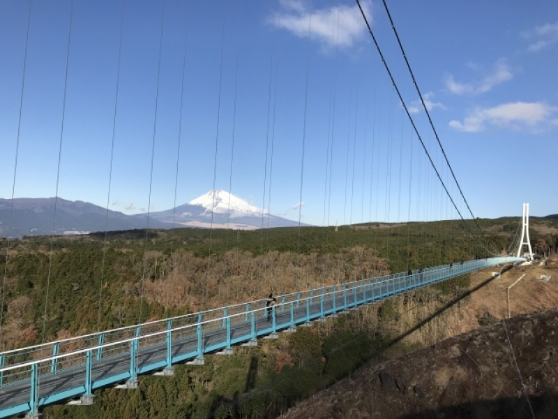 Mishima Skywalk which is the longest pedestrian  bridge