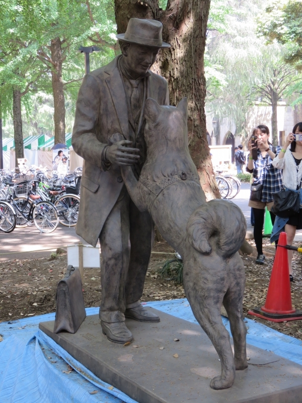 This is the statue of Hachi and his owner, Dr.Ueno. Hachi was a very faithful dog. Hachi was waiting for its owner at the gate of Shibuya station even after owner's death for 9years. (1923 – 1935)