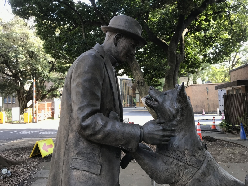 Hachi and his master in the University of Tokyo