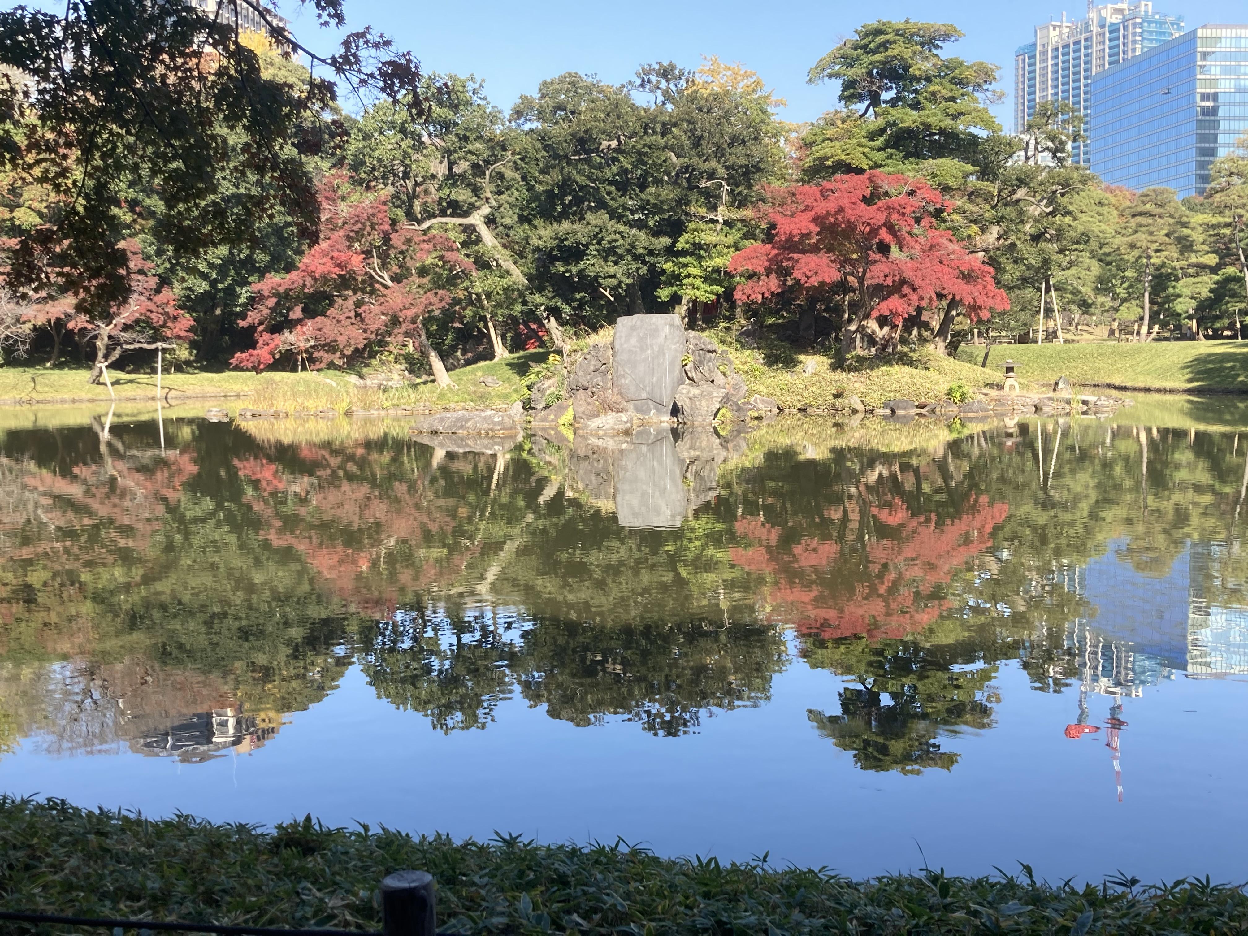 A November day in Koishikawa Korakuen