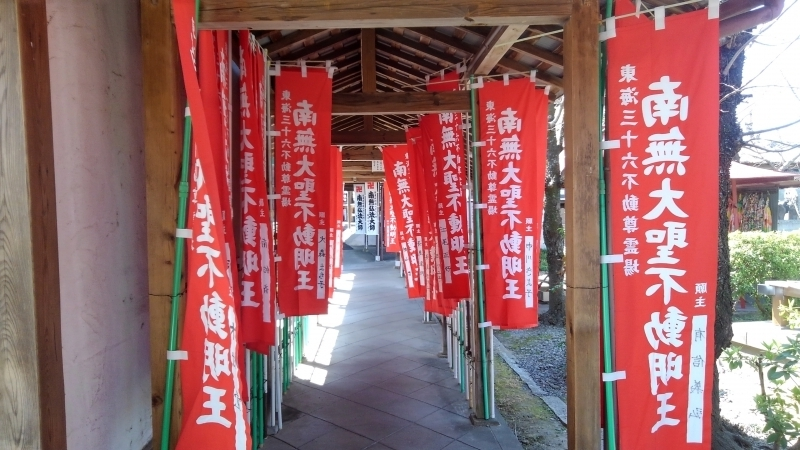 you can see the vermilion colored flags in the precincts of the temple