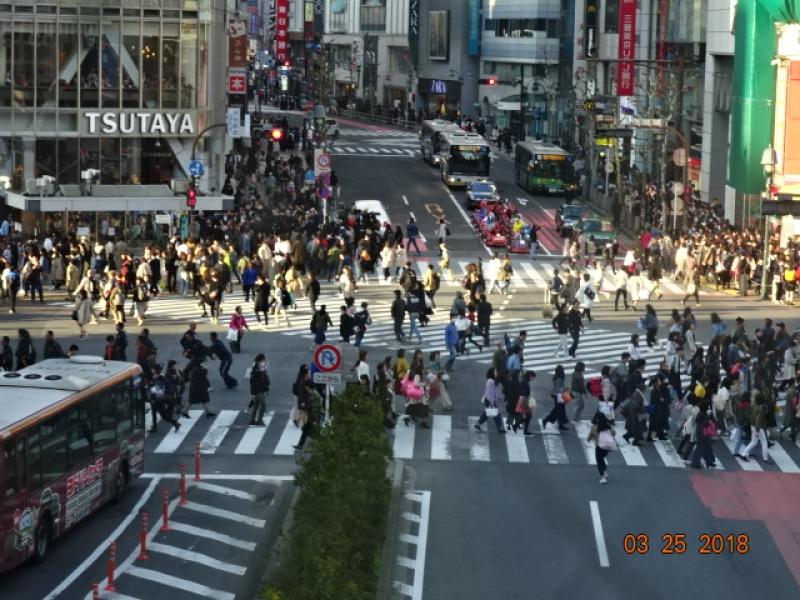 The Shibuya Crossing