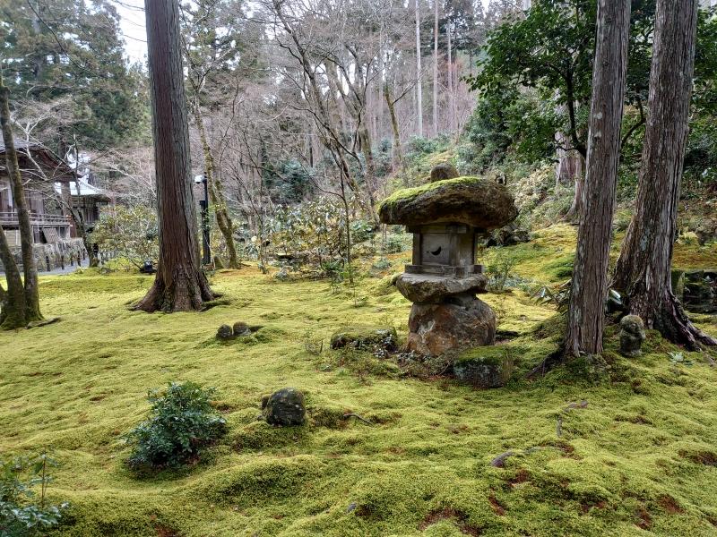 Sansen-in temple's garden and Zizo Buddha Sattuva on green moss