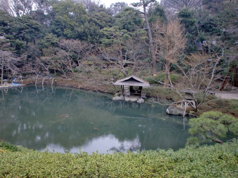 a traditional Japanese style garden : You can enjoy match tea ceremony in a tea house in the garden.