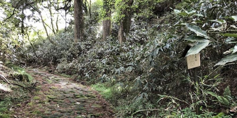 Marcher sur l'ancienne route Tokaido entre Hakoné et Mishima