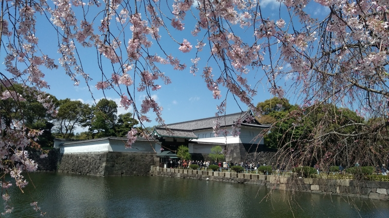 Must-See in Tokyo:TokyoTower, Zojoji, ImperialPalace, Ginza