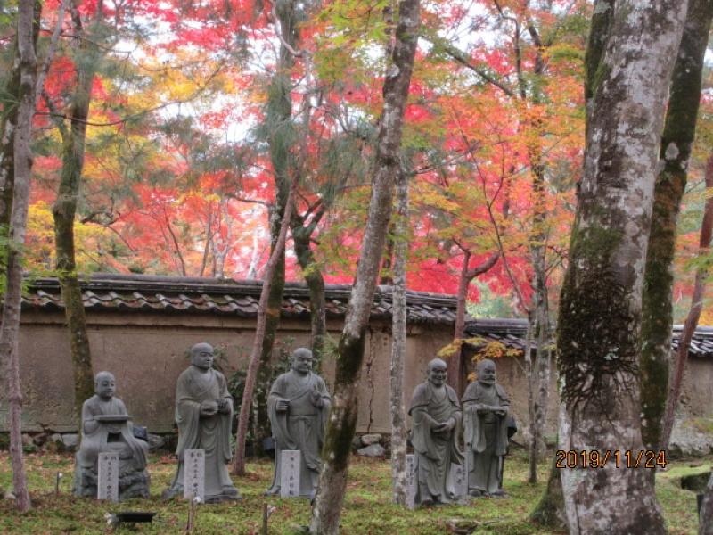 Kyoto in late November_1