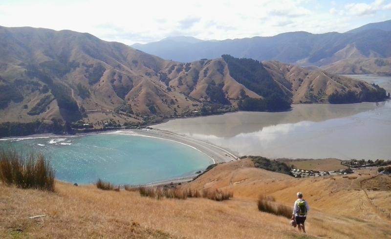 Cable Bay near Nelson