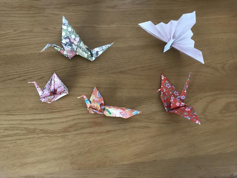 Various designs of Origami crane,