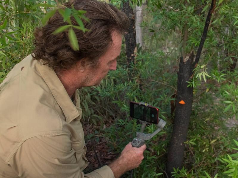 Online-Walk in Sydney's Wilderness