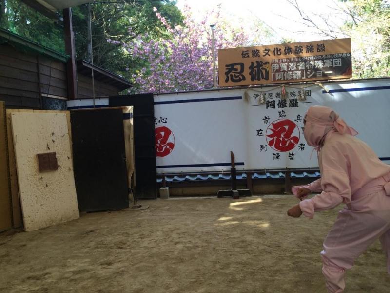 Expérience Unique Ninja d'une Journée à Iga