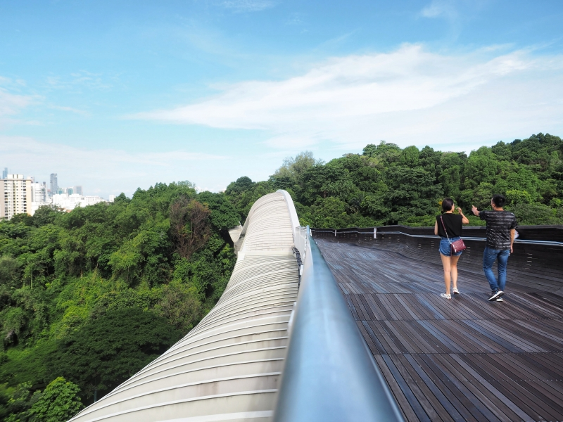 Atop the Henderson Waves