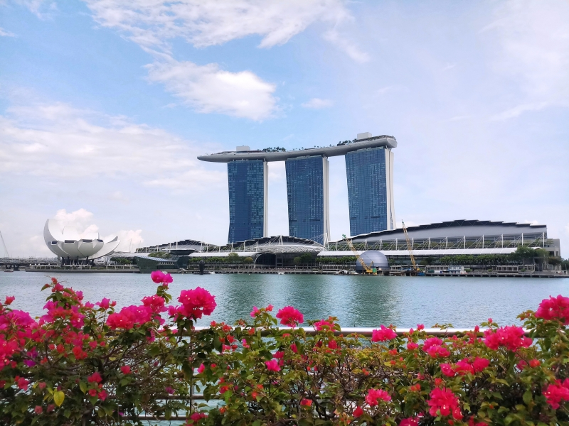 Marina Bay Sands with its rooftop observation deck