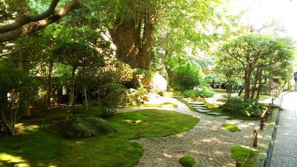 Peaceful garden in Hokoku-ji temple