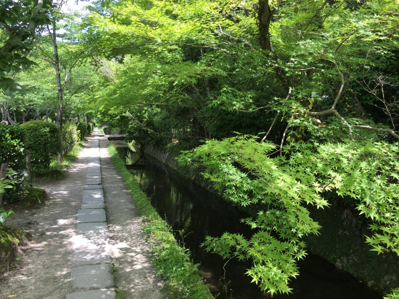 The summer scenery of the Path of Philosophy