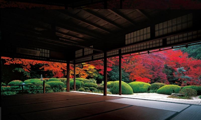 Fall colors at Shisendo Temple