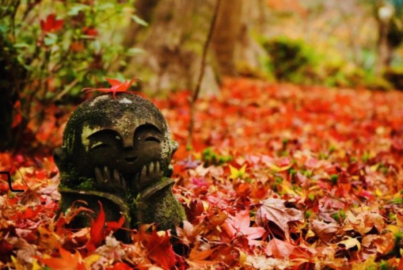 Fall colors at Enkoji Temple