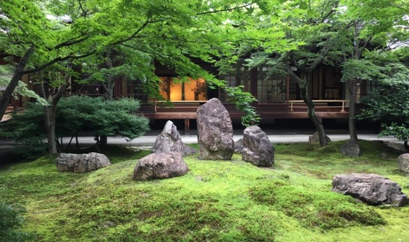 Japanese garden at Kenninji Temple in Gion
