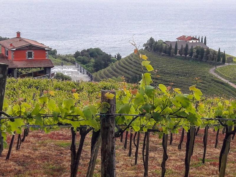 Private Tour along the Basque Coast & Countryside