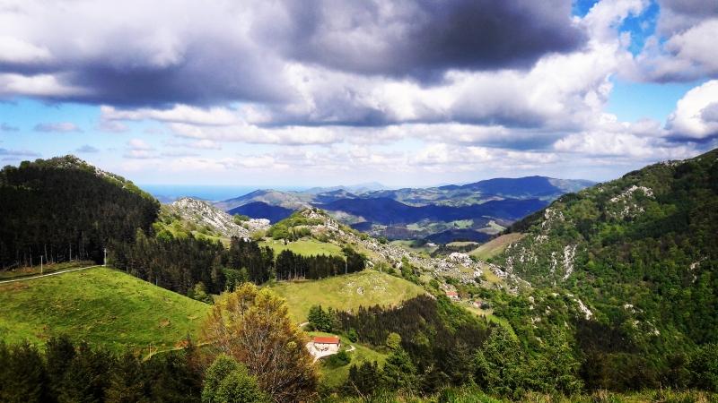 Basque Taste; Cheese & Wine  Private Tour