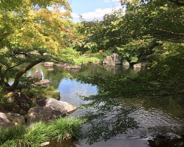 Himeji Castle and neighborhood 1 day trip