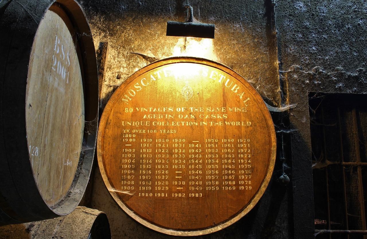 Private Setúbal Region Wine Tasting Experience
