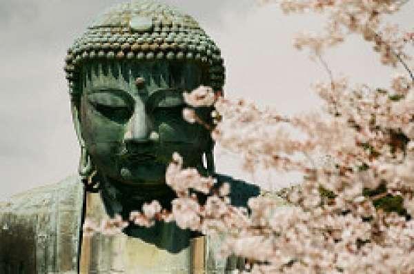 Kamakura Daibutsu in Koutoku-in Copy from Flickr