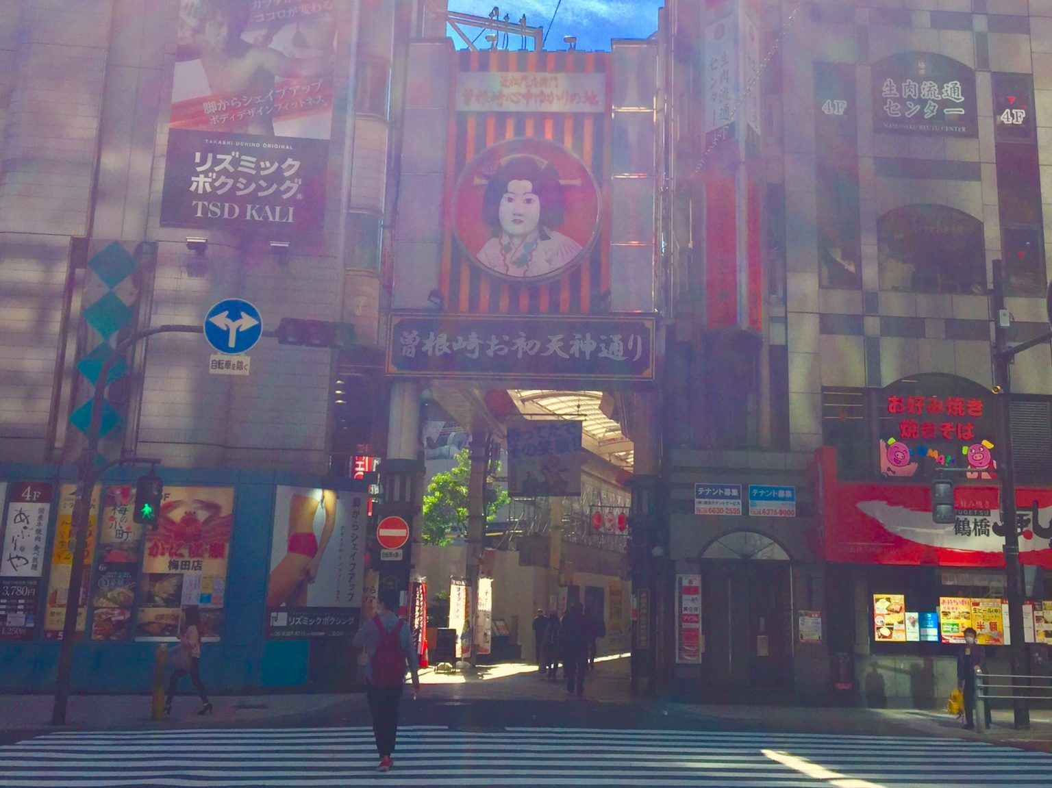 Half-Day Private Guided Tour to Osaka Kita