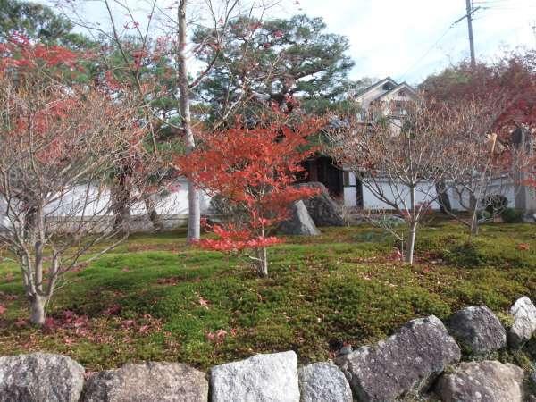 Enkouji Temple's front garden
