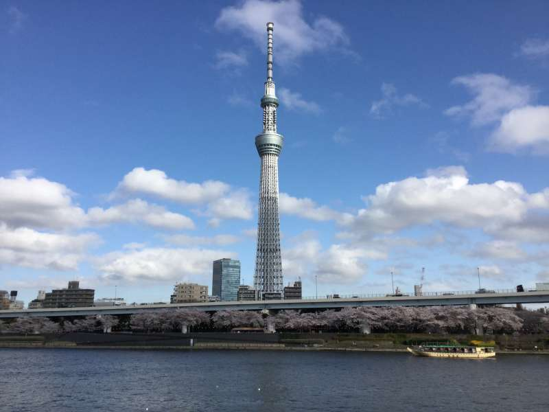 O1. Tokyo Sky Tree (634 m, the highest tower in Japan)