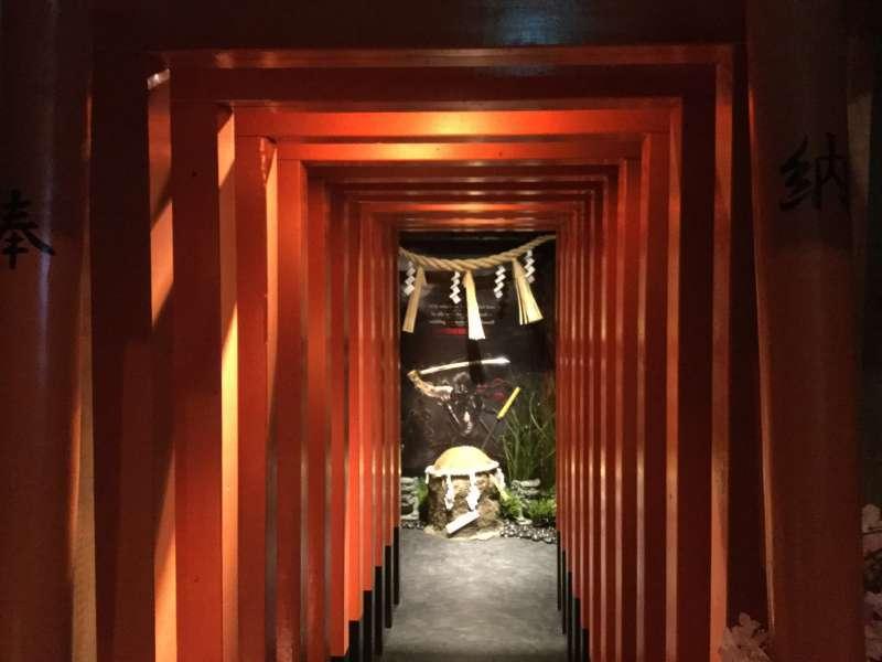 E1. Ninja Experience (Torii gate entrance)