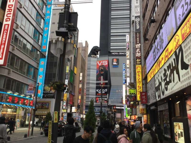 S4. Shinjuku Kabukicho (Godzilla road, Godzilla head at the top of a building)