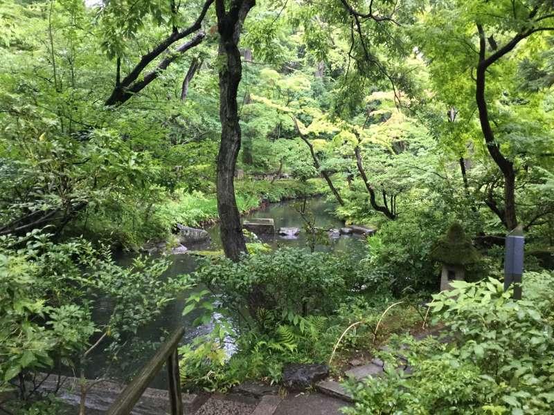M5. Nezu Museum (Japanese garden)