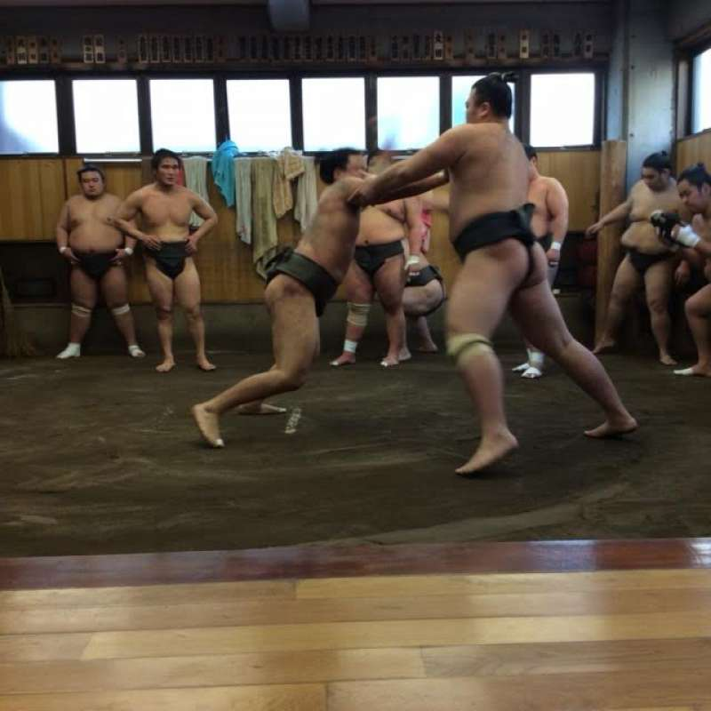 Early morning sumo practice!