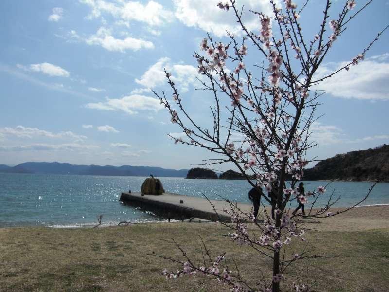 Beautiful Seto Inland Sea